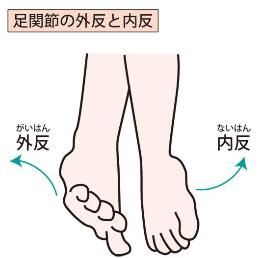 足関節の外反と内反