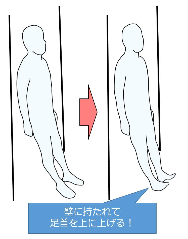 壁にもたれての前脛骨筋の筋力トレーニング
