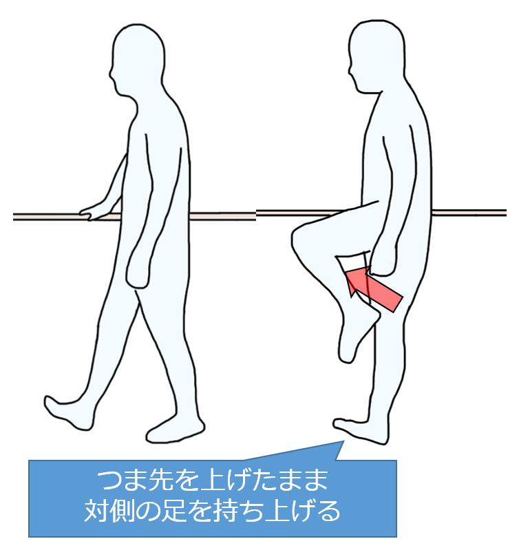 立位での前脛骨筋の筋力トレーニング