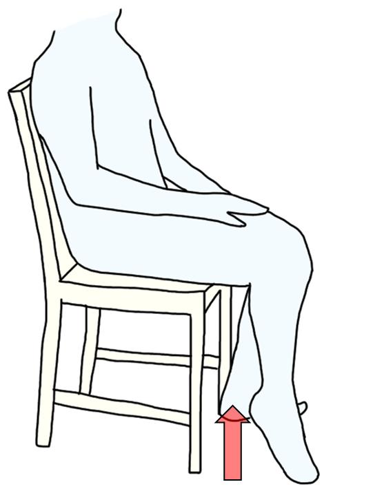 座りながらでの下腿三頭筋の運動